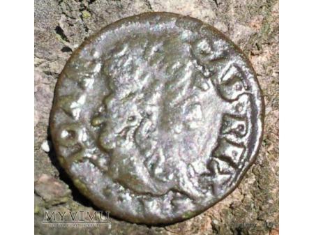 szeląg koronny 1663 18