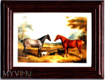 Obrazek 2 konie i psy