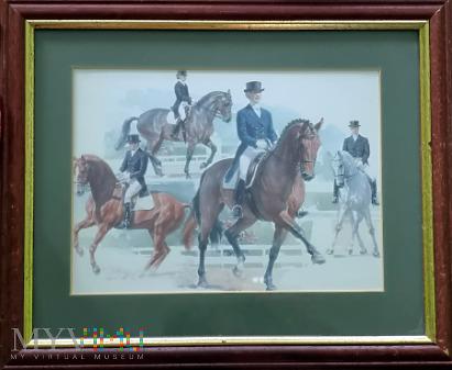 Obrazek Ujeżdżanie koni