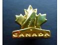 Kanadyjska Federacja Hokeja na Lodzie