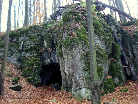 Jaskinia Niedźwiedzia (Złoty Potok)