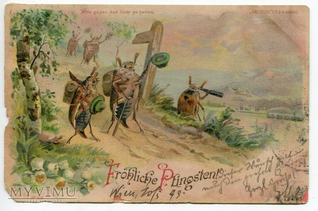 1899 Zielone Świątki pocztówka