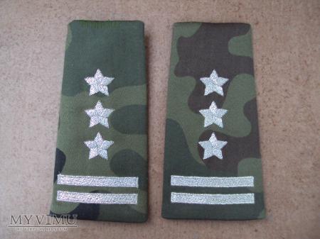 Pochewki z oznakami stopnia - pułkownik BOR
