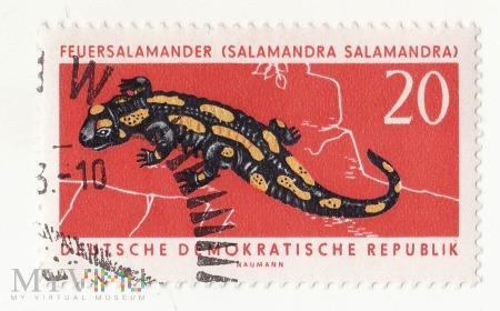 Znaczek pocztowy -Zwierzęta 6