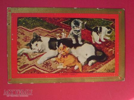 Szczęśliwa Rodzinka Kocurki i Kocia mama