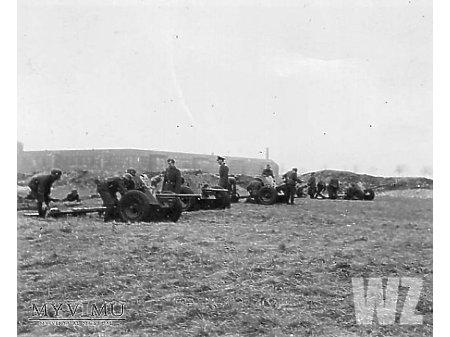 Duże zdjęcie Działa Pak 36