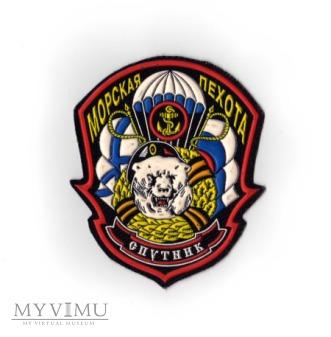61 Samodzielna Brygada Piechoty Morskiej - Sputnik