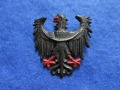 Winterhilfswerk-odznaka propagandowa WHW