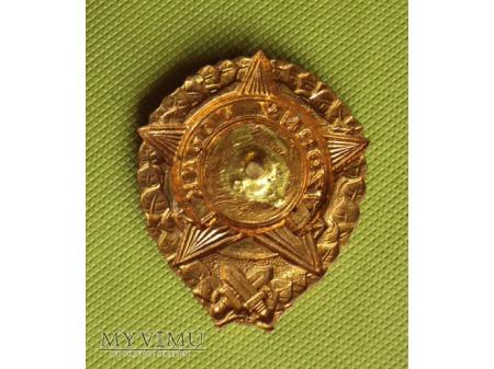 Odznaka Wzorowy Żołnierz