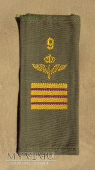 Szwecja - oznaka stopnia flygvapnet: plutonowy