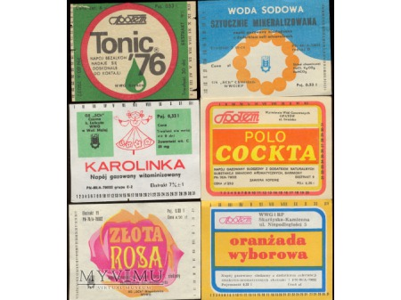 Złota Rosa, Polo Cockta, Karolinka i ...