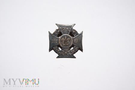 Duże zdjęcie Odznaka ZHP