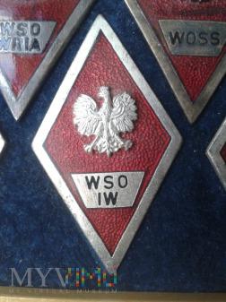 Odznaka absolwenta W S O I W