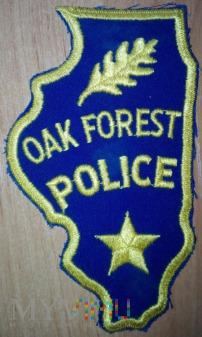 Oak Forest policja