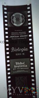 Układ krążenia . Krew i płyn . Biologia Klasa VII