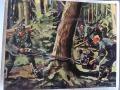 żołnierze ścinają drzewo