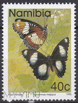 Duże zdjęcie Danaid Eggfly (Hypolimnas misippus)