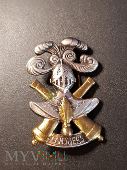 Odznaka Poligonu Artyleryjskiego w Canjuers