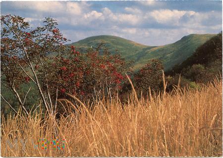 Bieszczady - Bukowe Berdo (1313 m)