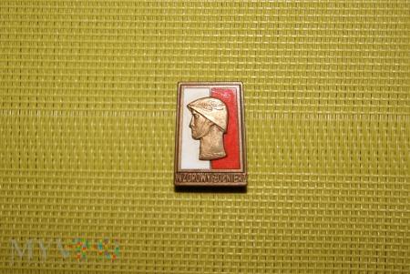 Odznaka Wzorowy Żołnierz - brązowa