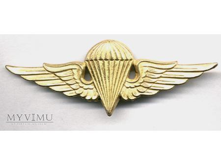 Duże zdjęcie Odznaka spadochronowa - Syria