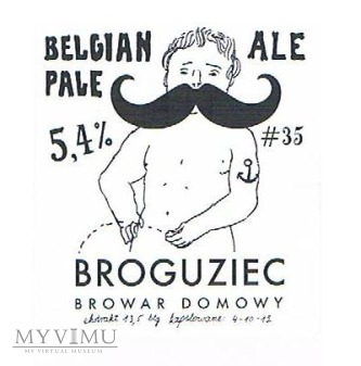 belgian ale pale