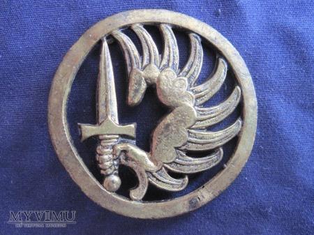 Odznaka TAP beret/Dom