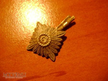 gwiazdka z niemieckiego pagonu