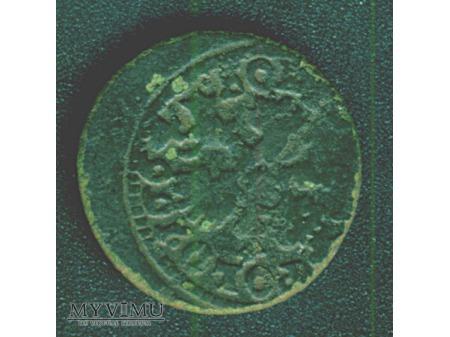 szeląg koronny 1664 6