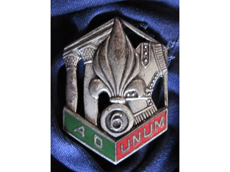 Odznaka 6REG Typ.2