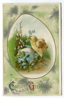 Duże zdjęcie 1910 John Winsch Wielkanoc Pisanka kurczaczek