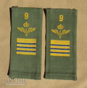 Szwecja - oznaka stopnia flygvapnet: st. plutonowy