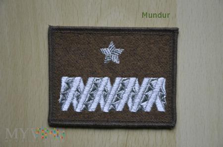 Oznaka stopnia - generał brygady SG