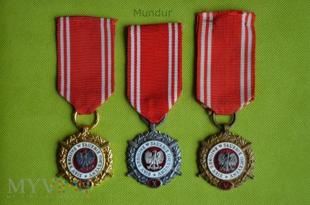 """Medal """"Siły Zbrojne w Służbie Ojczyzny"""""""