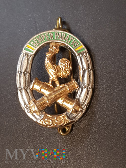 Pamiątkowa odznaka 39 Pułku Artylerii - Francja