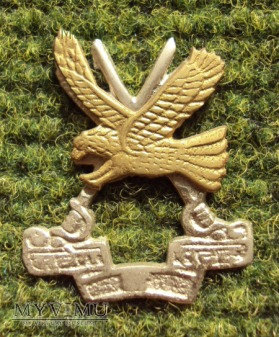 Indian Army: Army Aviation Corps