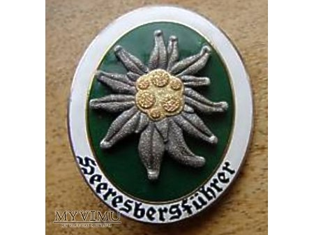 Niemiecka odznaka Heeresbergfuhrer wz57