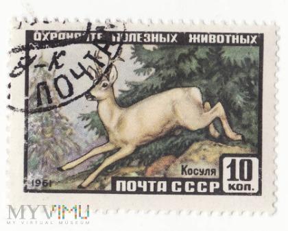 Znaczek pocztowy -Zwierzęta 11
