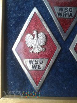 Odznaka absolwenta W S O W Ł