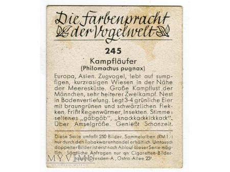 Die Farbenpracht der Vogelwelt PTAKI album 1939