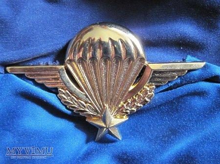 Duże zdjęcie Odznaka spadochroniarza złota