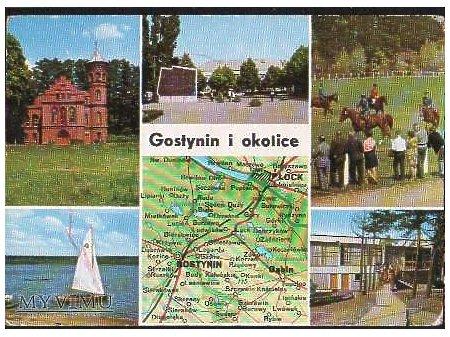 Gostynin i okolica