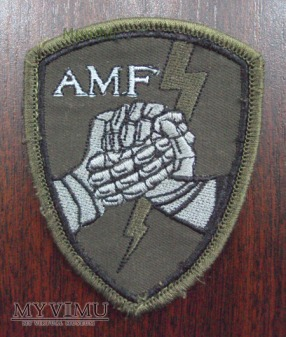 Oznaka: Allied Mobile Force (AMF) na m.polowy