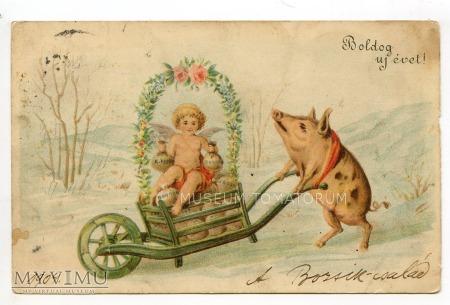 Świnka Noworoczna - 1903