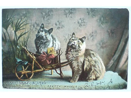 1906 KOTKI - Piękne Modelki przy swoim wózku
