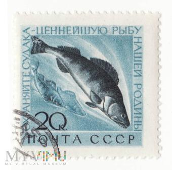 Znaczek pocztowy -Zwierzęta 12