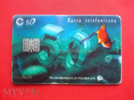 Karta chipowa 67