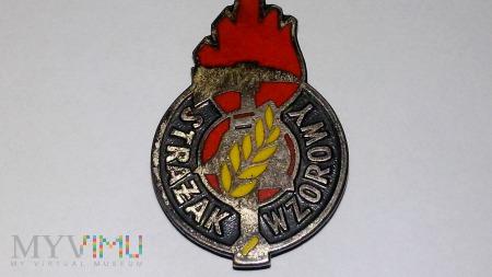 Wzorowy Strażak Korpusu Technicznego Pożarnictwa
