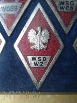 Odznaka absolwenta W S O W Z