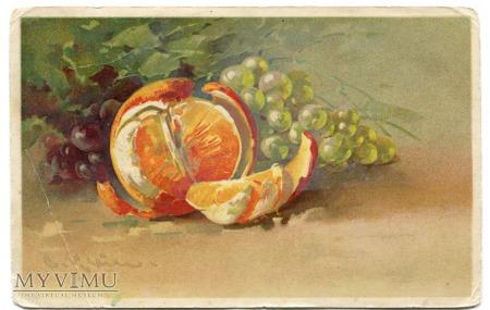 Catharina C. Klein owoce Fruit winogrona